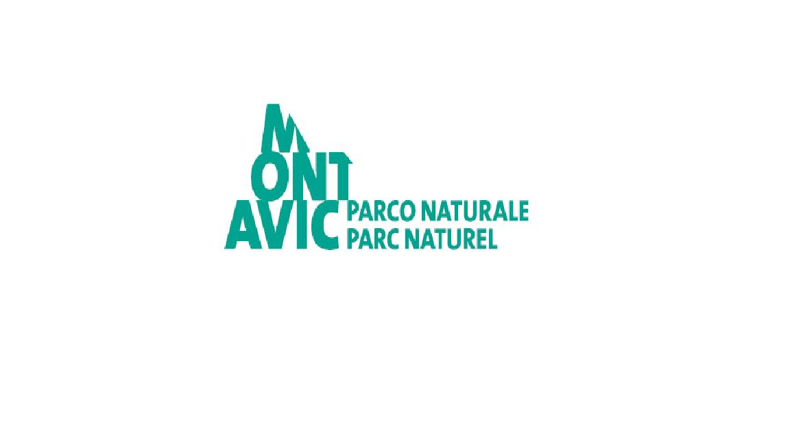 logo_mont_avic