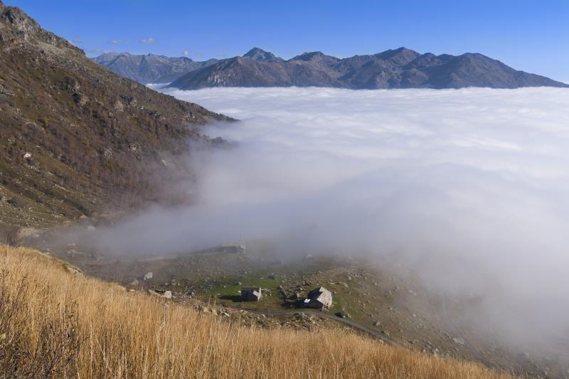 Scalaro view